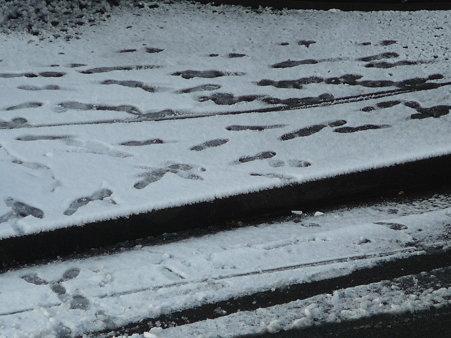 100202-雪 (5)