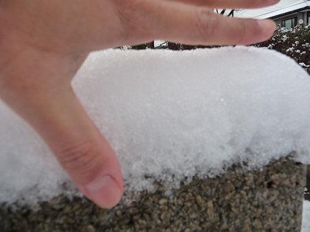 100202-雪(朝) (19)