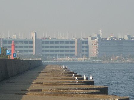 100224-本牧海釣り桟橋 (12)