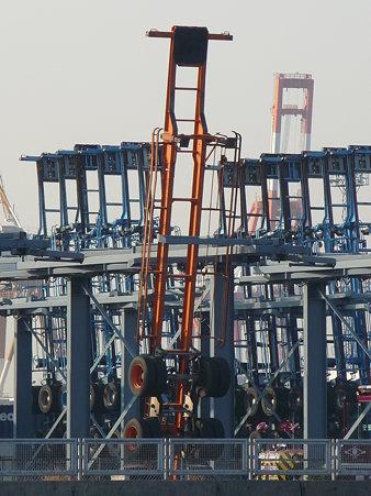 100224-本牧海釣り桟橋 (48)
