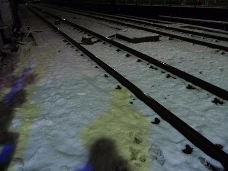 110215-雪 (1)