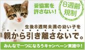 8syu_b_side_M3