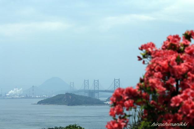 讃岐富士遠望図
