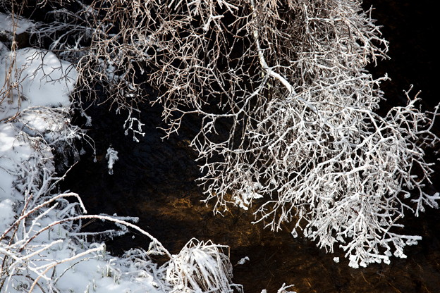 雨氷・霧氷・雪の華13