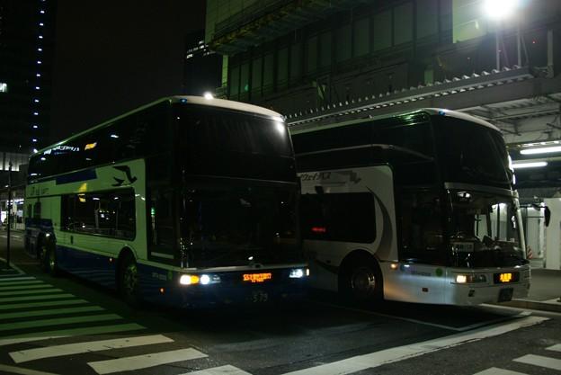 2009.01.18 (206)