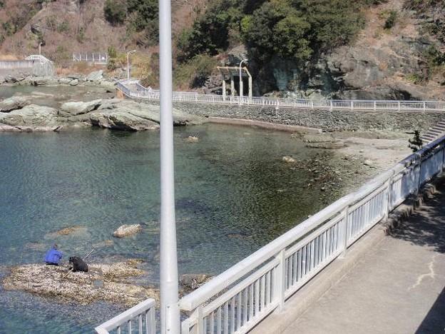 雑賀崎遊歩道