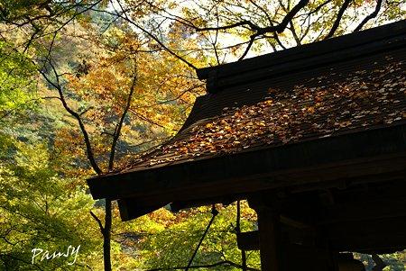 貴船神社にて・・4