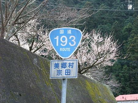 2010年2月28日美郷R193沿い02