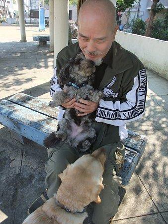ガンバレセラピー犬!