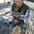 Photos: ガンバレセラピー犬!