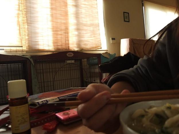 Photos: 昼ごはんを食べる私