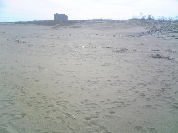 写真: 小針浜ビーチクリーン (1)