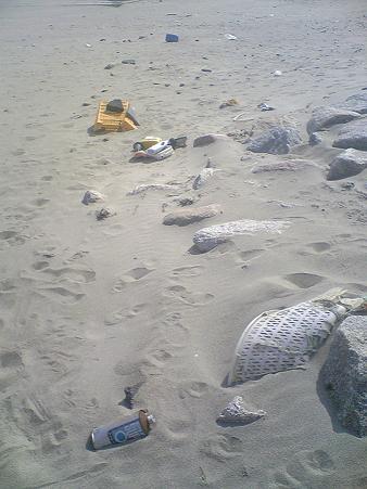 小針浜ビーチクリーン (4)