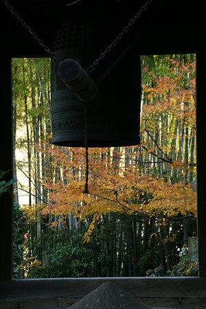 紅葉に染まる梵鐘、報国寺091212-791