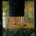 写真: 紅葉に染まる梵鐘、報国寺!(091212)