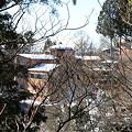 写真: 100116-26大岳山・馬頭刈尾根 大岳山荘