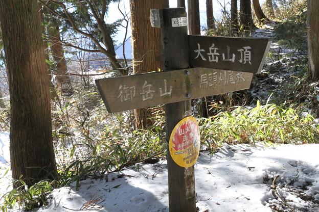 写真: 100116-27大岳山・馬頭刈尾根 大岳山への分岐