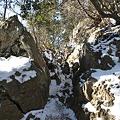 写真: 100116-29大岳山・馬頭刈尾根 岩登り