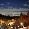 写真: 阿夫利神社下社の紅葉と夜景