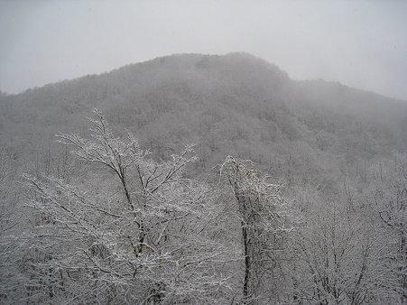 雪の奥入瀬