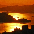 写真: 浄土寺山の光る海