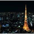 東京タワー(2009年ライトダウン伝説)_008