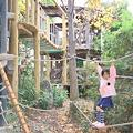 Photos: 生活展 落ち葉の森の中でロープ遊び
