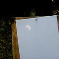Photos: 20120521 金環日食 (02) 鏡