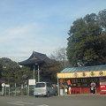 大樹寺(駐車場8)