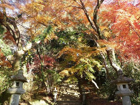 秋月~黒門の紅葉2009(3)
