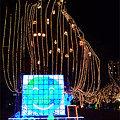 写真: 鳥栖 Heart Light Festa(6)