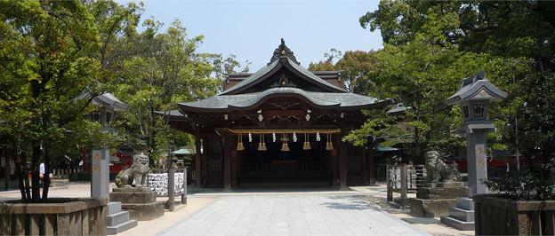 宇美八幡宮(1)