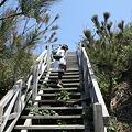 写真: IMG_6858神津島__天上山登山と島巡り