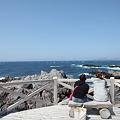 写真: IMG_6923神津島__天上山登山と島巡り