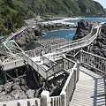 写真: IMG_6931神津島__天上山登山と島巡り