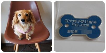 20120520 狂犬病予防接種 完了♪