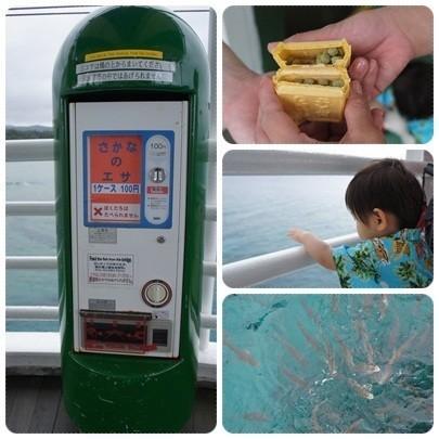 20120603 ブセナ海中公園(海中展望塔、お魚さんエサ)