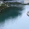 川の流れ?