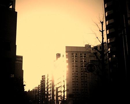 ビルに反射する夕陽