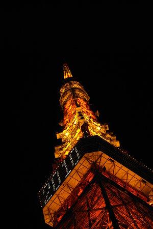 2010年初の東京タワー