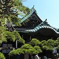 Photos: 松の帝釈天