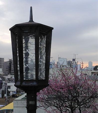 谷中の街灯