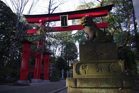 峯ケ岡八幡神社の鳥居と狛犬