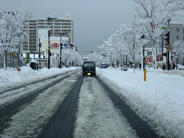 ドカ雪@弁天線 2009-12-17 新潟駅南の弁天線ですら、この状態‥(汗) Exifなし