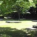 写真: キャンプ場がある