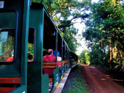 園内を走る列車
