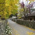 Photos: 外岩里村3