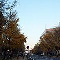 Photos: PC060191