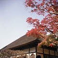 写真: 円覚寺の紅葉 二眼編 02