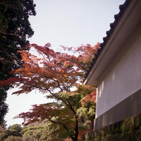 円覚寺の紅葉 二眼編 03